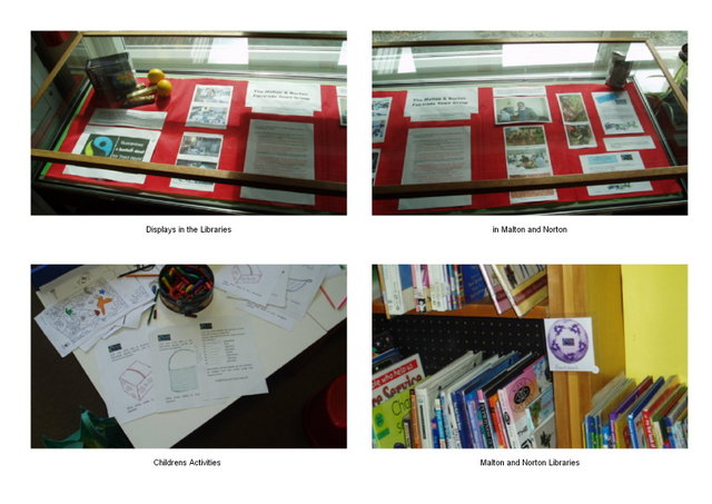 Library Displays 2008